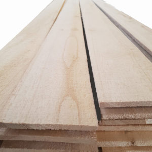 Paulownia boards - iPaulownia