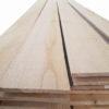 paquetes madera paulownia - iPaulownia